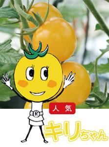 キリちゃん(ミニトマト)